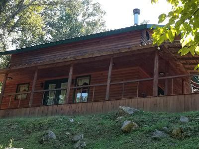 Cocke County Single Family Home For Sale: 389 McGaha Chapel Rd