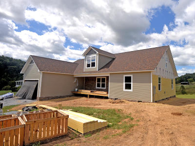 Grainger County Single Family Home For Sale: Lot 20 River Stone Rd
