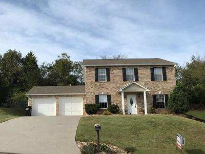 Knoxville Single Family Home For Sale: 1142 Mortons Meadow Rd