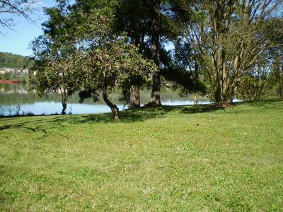 Oak Ridge Residential Lots & Land For Sale: 8005 River Drive