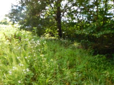 Cumberland Gap Residential Lots & Land For Sale: Miles Lane
