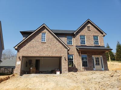 Knoxville Single Family Home For Sale: 10507 Boulder Springs Lane