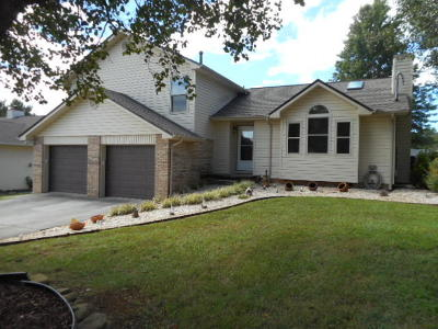 Powell Single Family Home For Sale: 317 Granville Conner Rd