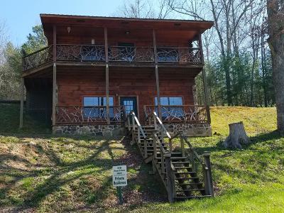 Tellico Plains Single Family Home For Sale: 110 Peachtree Lane