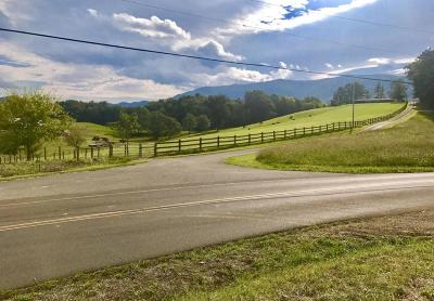 Sevierville Residential Lots & Land For Sale: County Line Rd