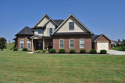 Sevierville Single Family Home For Sale: 1625 Cascading Falls Lane