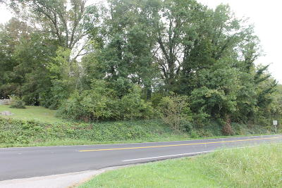 Seymour Residential Lots & Land For Sale: Boyds Creek Hwy
