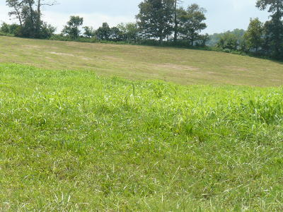 Rutledge Residential Lots & Land For Sale: Lot 20 Lookout Drive