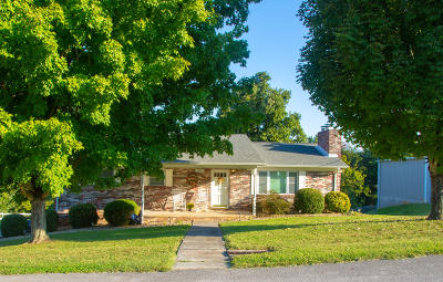 Maryville Single Family Home For Sale: 313 Melbourne Drive