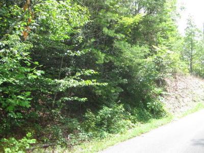 Gatlinburg Residential Lots & Land For Sale: Black Gum Gap Road Rd