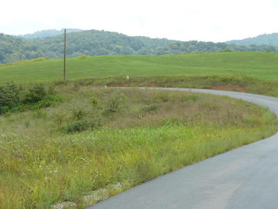 Rutledge Residential Lots & Land For Sale: Lot 13 Lookout Drive