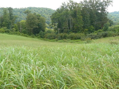 Rutledge Residential Lots & Land For Sale: Lot 14 Lookout Drive