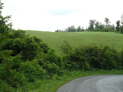 Rutledge Residential Lots & Land For Sale: Lot 15 Lookout Drive