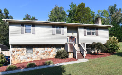 Knoxville Single Family Home For Sale: 7740 E Ogg Rd