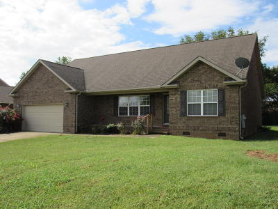 Maryville Single Family Home For Sale: 143 Heritage Crossing Drive