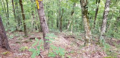 Sevierville Residential Lots & Land For Sale: Dogwood Drive