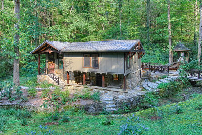 Single Family Home For Sale: 259 Black Mash Hollow Rd