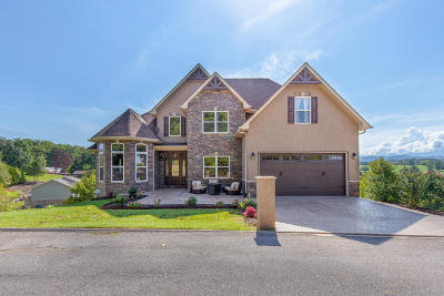 Sevierville Single Family Home For Sale: 1202 Foxwood Drive