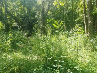 Morristown Residential Lots & Land For Sale