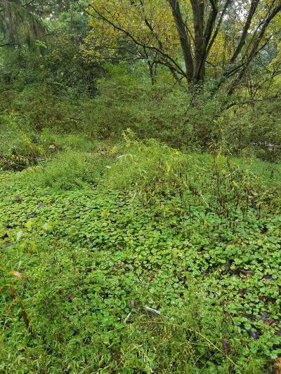 Powell Residential Lots & Land For Sale: 8360 Brickyard Rd
