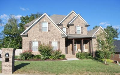 Knoxville Single Family Home For Sale: 1267 Ansley Woods Way