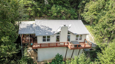 Single Family Home For Sale: 245 Cooper Hollow Rd