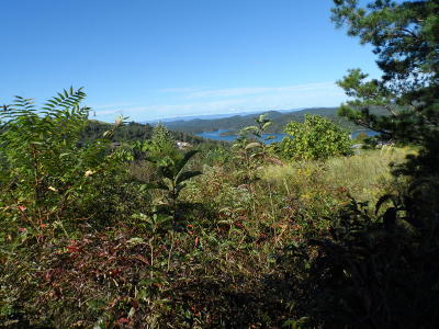 Maynardville Residential Lots & Land For Sale: Lot 57 Panoramic Drive