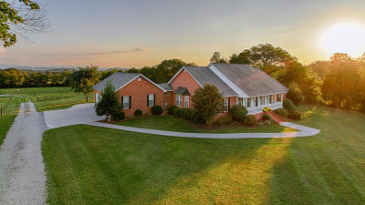 Strawberry Plains Single Family Home For Sale: 605 S Carter School Rd