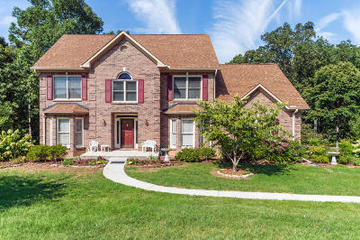 Knoxville Single Family Home For Sale: 657 Tree Ridge Drive