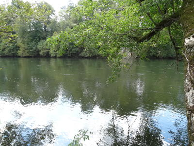 New Market Residential Lots & Land For Sale: 1945 River Mist Circle