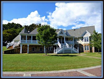 Dandridge Single Family Home For Sale: 1387 Harold Patterson Rd