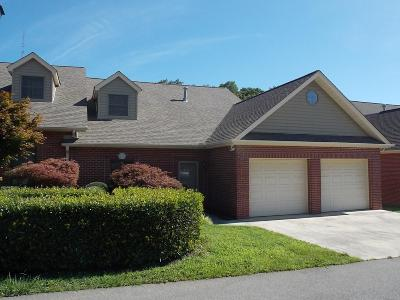 Lenoir City Single Family Home For Sale: 124 Pinewood Drive