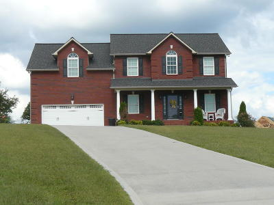 Single Family Home For Sale: 158 Dudley Circle
