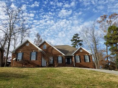Knoxville Single Family Home For Sale: 7933 Wells Scenic View Lane