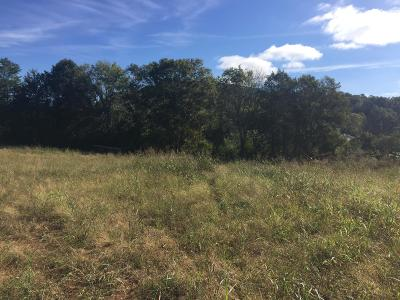 Maryville Residential Lots & Land For Sale: 1920 Chota Rd