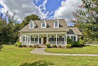 Loudon County Single Family Home For Sale: 24720 Hines Valley Rd