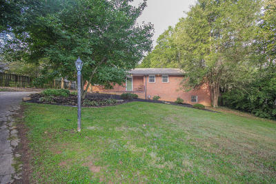 Knoxville Single Family Home For Sale: 1007 S Chilhowee Drive