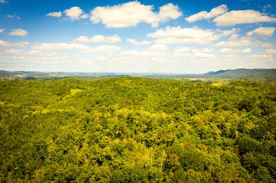 Rogersville Residential Lots & Land For Sale: Rocky Hollow Rd