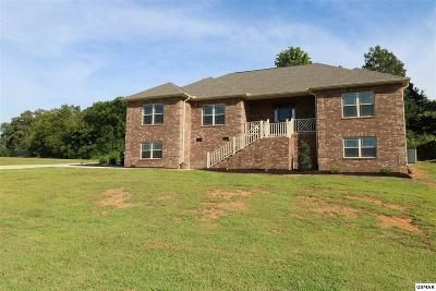 Sevierville Single Family Home For Sale: 1831 Sierra Lane