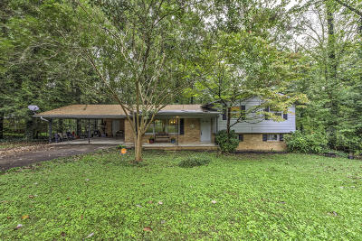 Anderson County Single Family Home For Sale: 107 Willow Lane