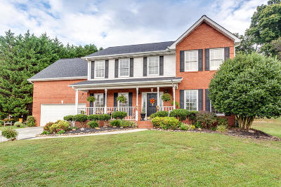 Knoxville Single Family Home For Sale: 2922 Cherry Branch Drive