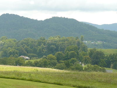 Claiborne County Residential Lots & Land For Sale: Lot 21 Dudley Lane