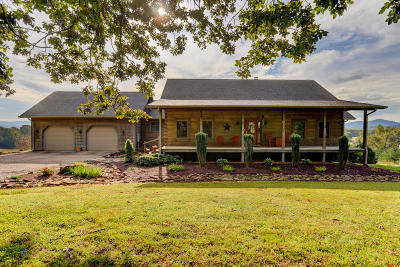 Tellico Plains Single Family Home For Sale: 313 Dunn Rd