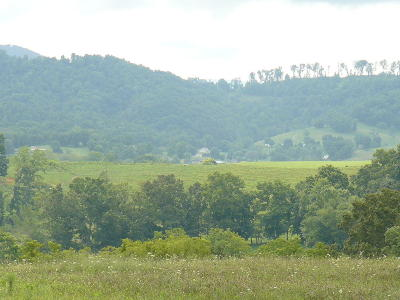 Claiborne County Residential Lots & Land For Sale: Lot 37 Imogene Lane