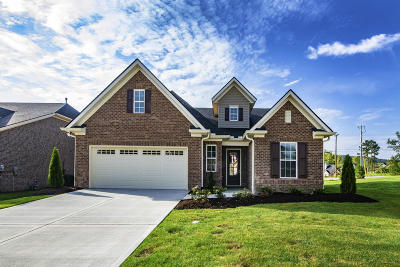 Knoxville Single Family Home For Sale: 1616 Choto Meadows Lane