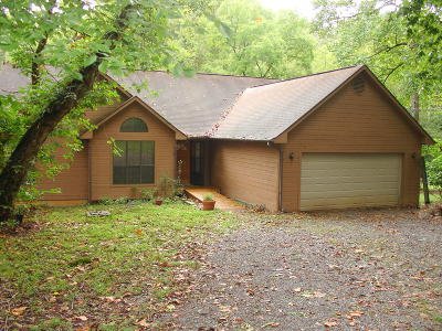 Sevierville Single Family Home For Sale: 2322 Arch Rock Drive