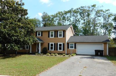 Knoxville Single Family Home For Sale: 11324 Birch Springs Drive