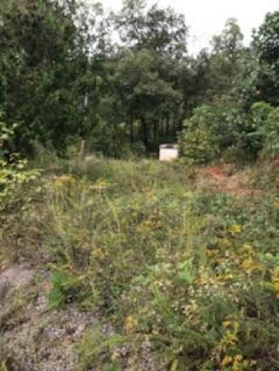 Residential Lots & Land For Sale: 1184 Whitman Hollow Rd