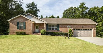 Anderson County Single Family Home For Sale: 123 Cascade Lane