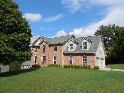 Knoxville Single Family Home For Sale: 1400 Bayhill Ridge Lane